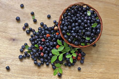 Berries on the table. Stock Photos