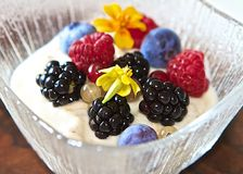 With Berries on Top Royalty Free Stock Photography