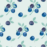 Berries vector background illustration. Stock Photo