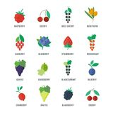 Berries vector icons set. Berries set of vector objects for web and apps design in flat style royalty free illustration
