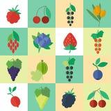 Berries vector icons set Stock Photos