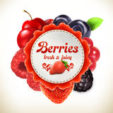 Berries vector label Royalty Free Stock Photos