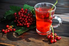 Berries of a viburnum on a wooden surface. Drink from the viburnum. royalty free stock image