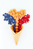 Berries in wafer cup. Healthy ice-cream. Healthy food: Wild berries in wafer cup  on white background Royalty Free Stock Photos