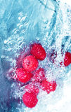 Berries in water Royalty Free Stock Photography