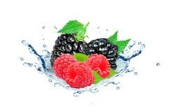 Berries water splash Stock Photo