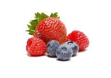 Berries on White Background Stock Photography