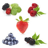 Berries on white background - close-up Royalty Free Stock Image