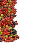 Berries on a white background closeup Royalty Free Stock Photos
