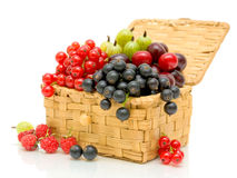 Berries in a wicker basket on a white background. Ripe, juicy berries in a wicker basket on a white background close-up Royalty Free Stock Images