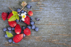 Berries on wood background Royalty Free Stock Images