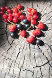 Berries on wooden background Stock Images