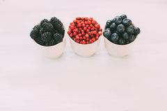 Berries on Wooden Background. Royalty Free Stock Photography