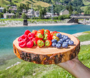 Berries on wooden cutting board with background mountains. Fresh berries on wooden cutting board with background mountains Royalty Free Stock Photos