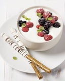 Berries with Yogurt Stock Images