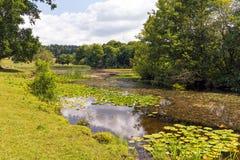 Berrington霍尔湖, Herefordshire,英国 库存图片