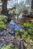Berrocal von Rugidero, Extremadura, Spanien Stockbilder