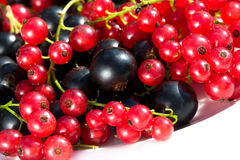 Berry Royalty Free Stock Photography