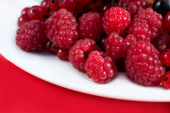 Berry. Raspberry fresh and juicy fruits on white plate Stock Photos