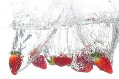 Berry Stock Image