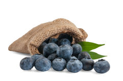 Berry. Blueberries in a canvas bag Royalty Free Stock Photography