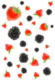 Berry. Royalty Free Stock Photography