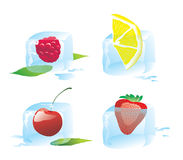 Berry. A set of ice cube with berry royalty free illustration