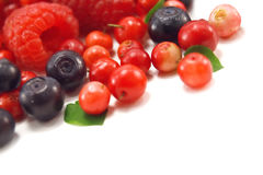 Berry Royalty Free Stock Photos