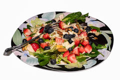 Berry Almond Pecan Chicken Salad Royalty Free Stock Image