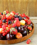 Berry assortment Stock Photography