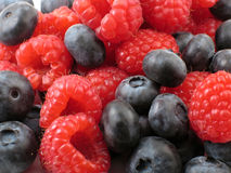 Berry Background. Fresh raspberries and blueberries in a jumble in macro Royalty Free Stock Photo