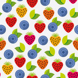 Berry background Stock Images