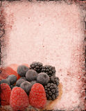 Berry Background Royalty Free Stock Photography