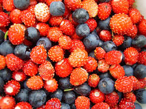 Berry background. With strawberry and blueberry Stock Photo