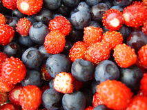 Berry background. With strawberry and blueberry Stock Photography