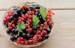 Berry background. Black berries and red currants are in light brown wicker basket on a wooden surface. Royalty Free Stock Photo