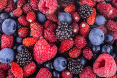 Berry background Royalty Free Stock Image