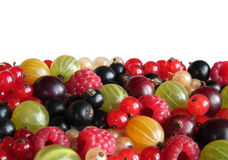Berry background horizontal Stock Photography