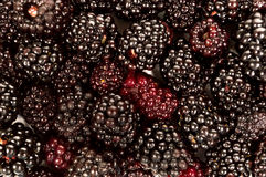 Berry Background Shot Close Up Fotografia Stock