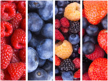 Berry backgrounds. Collection of 4 berry backgrounds Royalty Free Stock Photo