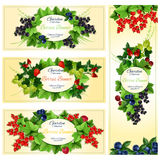 Berry banner set with fruit and leaf frames Royalty Free Stock Images
