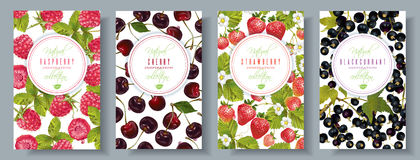 Berry banners set. Vector berry vertical banners set. Raspberry, cherry, strawberry, black currant. Design for sweets and pastries filled with berry, candy Royalty Free Stock Photos