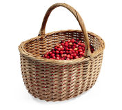 Berry in basket Stock Photos