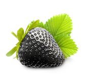 Berry black strawberry Royalty Free Stock Photo