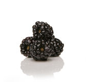 Berry, Blackberry Royalty Free Stock Photography