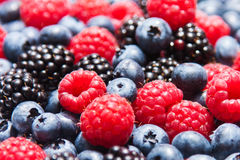 Berry. Blueberries, Raspberries and Blackberries mixed Royalty Free Stock Photography