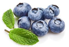 Berry blueberry with leaf mint large Fruity royalty free stock image