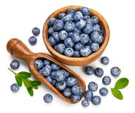 Berry blueberry in wooden dish with scoop Royalty Free Stock Photo