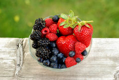 Berry Bowl. Bowl of mixed berries outdoors with a contrasting background Stock Image
