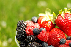 Berry Bowl Royalty Free Stock Photography